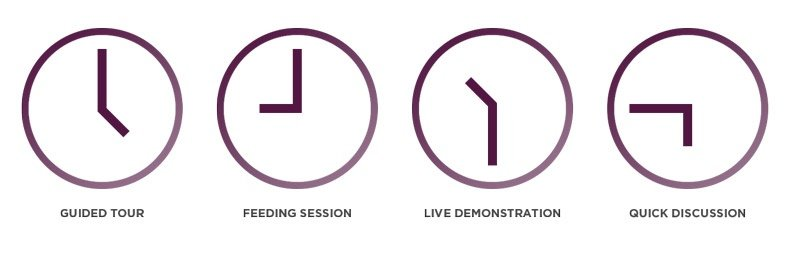 SESSION BASED TICKETS